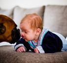 Gewinner des Fotowettbewerbs für Mütter, Thema 'Unsere Haustiere'