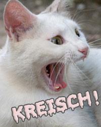 komplett kostenlose singlebörse Friedrichshafen